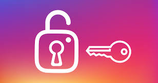 Instagram Development for Android Phones to Know More